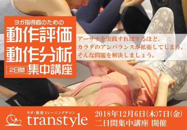 transtyle開催 ヨガ指導者のための動作評価・動作分析 集中講座